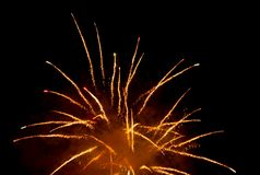 Firework. Beautiful orange firework at black night sky Stock Photos