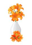 Beautiful orange lily flowers in vase isolated on white Stock Photo
