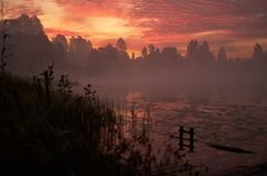 Beautiful orange pink sky over peaceful lake. Foggy autumn sunrise. Trees silhouette, lonely dock quiet forest, swamp. Plants, smoke mist on still calm water royalty free stock image
