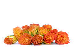 Beautiful orange roses in a iron basket Stock Image