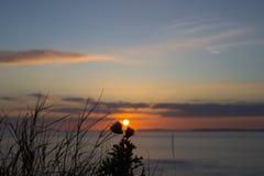 Beautiful orange sunset over loop head Stock Photo
