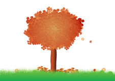Beautiful tree ( Vector illustration ). Beautiful orange tree ( Vector illustration royalty free illustration
