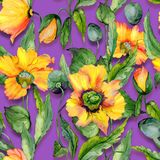 Beautiful orange welsh poppy flowers with green leaves on purple background. Seamless floral pattern. Watercolor painting. Hand painted illustration. Fabric Royalty Free Stock Photos