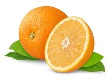 Beautiful oranges Royalty Free Stock Photography