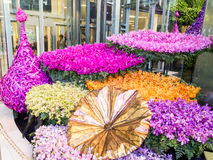 Beautiful orchid blossoms in siamparagon 2014 Royalty Free Stock Photo