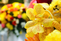 Beautiful orchid flower in a bouquet Royalty Free Stock Photo