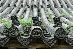 The Beautiful Orient Roof. The orient roof with lion sculptures and dragon carving,it was made about five hundred years ago Stock Image