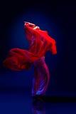 Beautiful oriental dancer Stock Photography