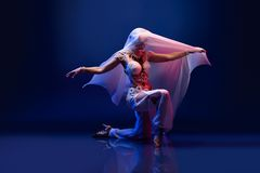 Beautiful oriental dancer Stock Images