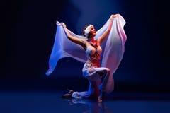 Beautiful oriental dancer Stock Image