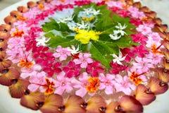 Beautiful oriental flowers Stock Photo
