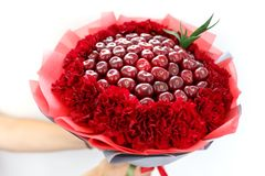 Beautiful original bouquet of carnations and ripe red cherries in the hands of the woman. View from above. royalty free stock photos