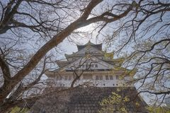 Beautiful Osaka Castle with branch of tree Royalty Free Stock Image