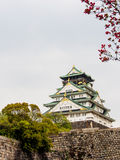 Beautiful Osaka castle, Osaka Japan 6 Royalty Free Stock Photography