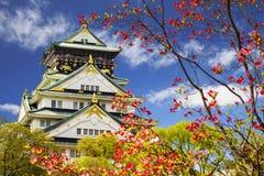 Beautiful Osaka Castle in Osaka with nice background, Japan Stock Image