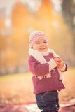 Beautiful outdoor autumn portrait of adorable toddler girl Stock Photography
