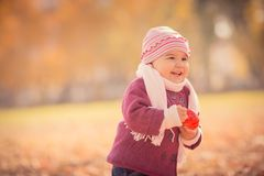 Beautiful outdoor autumn portrait of adorable toddler girl Royalty Free Stock Images