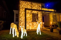 Free Beautiful Outdoor Christmas Lights Display House Decocation Royalty Free Stock Photography - 82976037
