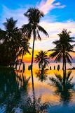 Beautiful outdoor nature landscape with sea ocean and coconut palm tree around swimming pool at sunrsie or sunset royalty free stock photo