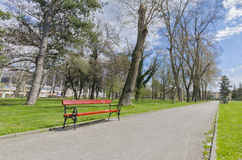 Beautiful outdoor park view of bench, wide angle lens