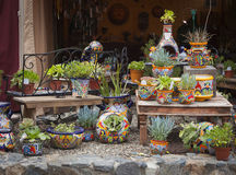 Outdoor Shop of Decorative Pots and Succulents Stock Photography