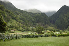 Beautiful overgrown ancient volcanic mountains in Sao Michel, Azores Royalty Free Stock Images