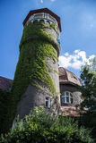 Beautiful overgrown water tower Rauschen, Kaliningrad region Royalty Free Stock Photos