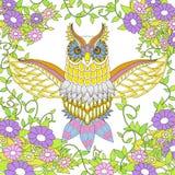 Beautiful owl coloring page Stock Photos