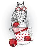 A beautiful owl sits on vintage cups. Vector illustration for a postcard or a poster. New Year`s and Christmas. Winter holidays. Stock Photos