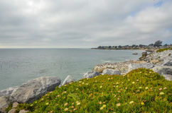 Beautiful Pacific coast, California. Beautiful pacific coast near Santa Cruz, California Royalty Free Stock Image