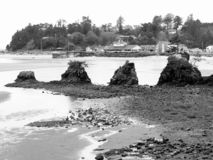 Beautiful Pacific Ocean Beach Beauty. Beautiful scenery of sand, rock formations,  and the ocean at the Siletz Bay at the mouth of Schooner Creek just south of stock image