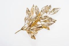 Beautiful painted golden mistletoe isolated Stock Photo