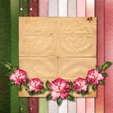 Beautiful painted rose on abstract background for congratulation Stock Image