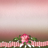 Beautiful painted rose on abstract background. For congratulations or invitation Royalty Free Stock Images