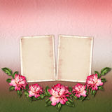 Beautiful painted rose with frames for congratulations Royalty Free Stock Photos