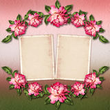 Beautiful painted rose with frames for congratulations Stock Images