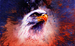 Beautiful painting of eagle on an abstract background,color with Royalty Free Stock Photo