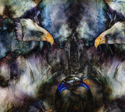 Beautiful painting of  eagles on an abstract background collage.. Stock Photo