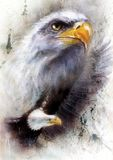 Beautiful Painting Of A Detailed Head Of American Golden Eagle, On An Abstract Textured B Stock Image