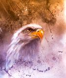 Beautiful painting of two eagles on an abstract background Symbols of the USA Stock Image
