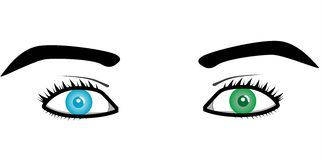 Beautiful pairs of eyes Royalty Free Stock Photo