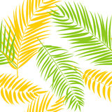 Beautiful Palm Tree Leaf  Silhouette Seamless Pattern Background  Stock Images