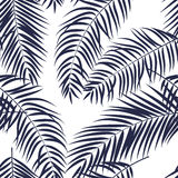 Beautiful Palm Tree Leaf  Silhouette Seamless Pattern Background Stock Image
