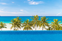 Beautiful palm tree over white sandy tropical beach. Sea and Bor Royalty Free Stock Photography