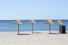 Palm tree sun umbrellas on the beach royalty free stock images