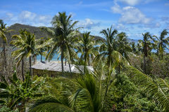 Beautiful palm tree view over Mantaray Island, Fiji. A beautiful palm tree view over Mantaray Island, Fiji Royalty Free Stock Photos