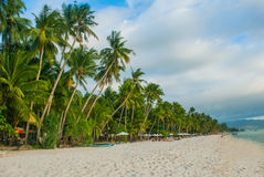 Beautiful palm trees on the White beach. Boracay island, Philippines Royalty Free Stock Image