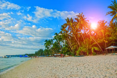Beautiful palm trees on the White beach. Boracay island, Philippines Royalty Free Stock Photography