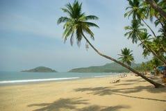 Beautiful palms on tropical beach Stock Image