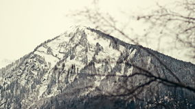 Beautiful panning shot with focus pulling from bare branches of the tree to the snow mountains. Video 1920x1080 stock video footage